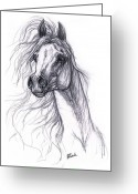 Sketch Drawings Greeting Cards - Wind In The Mane 2 Greeting Card by Angel  Tarantella