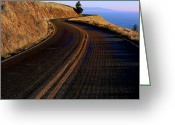 Tree Lines Greeting Cards - Winding road Greeting Card by Garry Gay