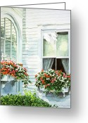 Impatiens Flowers Greeting Cards - Window Boxes Greeting Card by David Lloyd Glover