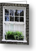 Brick Greeting Cards - Window in London Greeting Card by Elena Elisseeva