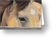 Buckskin Horse Greeting Cards - Window to the Soul Greeting Card by Nichole Taylor