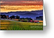 Vineyard Greeting Cards - Wine Country Greeting Card by Mars Lasar