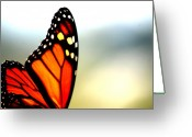 Monarchs Greeting Cards - Winged Greeting Card by Emily Stauring