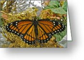 Designer Butterfly Works Photo Greeting Cards - Winged Friends Greeting Card by Debra     Vatalaro