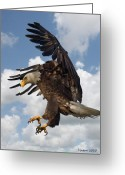 Bald Eagle Digital Art Greeting Cards - Wings Beak And Talons Greeting Card by Larry Linton