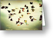 Large Group Of Animals Greeting Cards - Wings Of Colors Greeting Card by Manuel Orero Galan