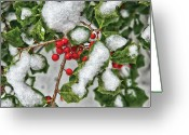You Greeting Cards - Winter - Ice coated Holly Greeting Card by Mike Savad