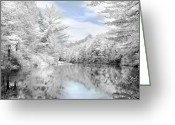 Beautiful Winter Greeting Cards - Winter at the Reservoir Greeting Card by Lori Deiter