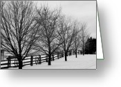 Winter Trees Greeting Cards - Winter Bares Them Greeting Card by Levin Rodriguez