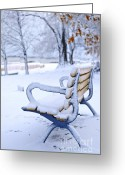 Empty Park Bench Greeting Cards - Winter bench Greeting Card by Elena Elisseeva