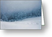 Snow Storm Greeting Cards - Winter Blizzard Greeting Card by Evgeni Dinev