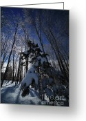 Connecticut Winter Scene Greeting Cards - Winter Blue Greeting Card by Karol  Livote