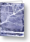 Winter Trees Greeting Cards - Winter Blues Greeting Card by Ann Powell
