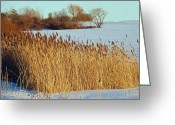 Snow Scenes Greeting Cards - Winter Breeze Greeting Card by Aimee L Maher