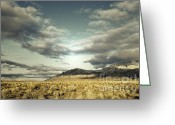 Autumn Photographs Greeting Cards - Winter Brilliance Greeting Card by Andrea Hazel Ihlefeld