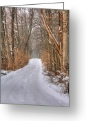Winter Road Greeting Cards - Winter Calm Greeting Card by JC Findley