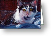Black And White Cat Greeting Cards - Winter Comfort Greeting Card by Pat Burns