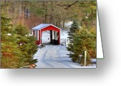 Ma Greeting Cards - Winter Crossing Greeting Card by Evelina Kremsdorf