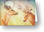 Deer Greeting Cards - Winter Deer Greeting Card by Bob Orsillo