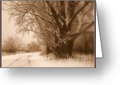 Winter Trees Greeting Cards - Winter Dream with Framing Greeting Card by Carol Groenen