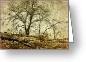 Winter Trees Greeting Cards - Winter Dreams Greeting Card by Iris Greenwell