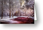 Winter Trees Greeting Cards - Winter Drive Greeting Card by Anthony Citro