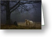Evening Landscape Greeting Cards - Winter Evening Greeting Card by Ron Jones