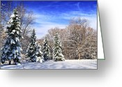 Covering Greeting Cards - Winter forest with snow Greeting Card by Elena Elisseeva