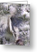 White White Horse Digital Art Greeting Cards - Winter Horse Greeting Card by Terril Heilman