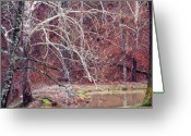 Winter Trees Greeting Cards - Winter in Arkansas Greeting Card by Fred Lassmann