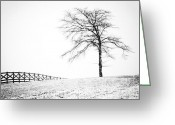 Snow Storm Prints Greeting Cards - Winter in Black and White Greeting Card by David Waldrop