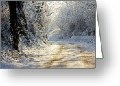 Dirt Road Greeting Cards - Winter In Small Countryside Road Greeting Card by © Frédéric Collin