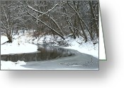 Shelter Prints Greeting Cards Greeting Cards - Winter In The Park Greeting Card by Kay Novy
