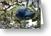Joann Skywatcher Greeting Cards - Winter Into Spring Greeting Card by JoAnn SkyWatcher