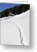 Snowy Tree Greeting Cards - Winter landscape - footprints in the snow leading to a barn Greeting Card by Matthias Hauser