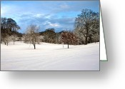 Seagull Photo Greeting Cards - Winter Landscape Greeting Card by Svetlana Sewell