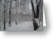 Snow Scenes Greeting Cards - Winter Lane Greeting Card by Ted Kitchen