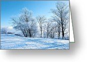 Pink Dawn Greeting Cards - Winter Lights Greeting Card by Svetlana Sewell