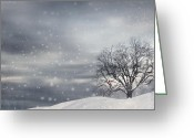Natures Beauty Greeting Cards - Winter Greeting Card by Lourry Legarde