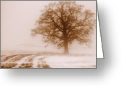 Meditative Greeting Cards - Winter Mist Greeting Card by Linda Mishler