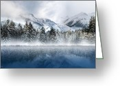Winter Trees Mixed Media Greeting Cards - Winter Mist Greeting Card by Svetlana Sewell