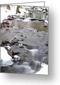 Virginia Winter Greeting Cards - Winter Monongahela National Forest Greeting Card by Thomas R Fletcher