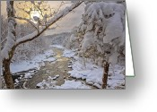Connecticut Winter Scene Greeting Cards - Winter Morning Greeting Card by Bill  Wakeley