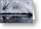 Weather Photographs Greeting Cards - Winter Reflections Greeting Card by Steven Milner