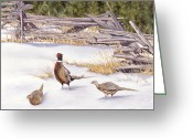 Split Rail Fence Painting Greeting Cards - Winter Ringed-Necks Greeting Card by Richard De Wolfe
