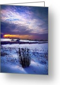 Winter Sun Greeting Cards - Winter Rising Greeting Card by Phil Koch