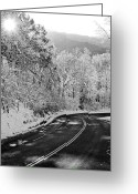 Country Lanes Photo Greeting Cards - Winter Road - Virginia Greeting Card by Brendan Reals