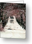 Photographs Digital Art Greeting Cards - Winter Road Greeting Card by Tom Prendergast