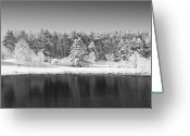 Nh Greeting Cards - Winter Scene 2 Greeting Card by Edward Myers