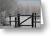 Fence Gate Greeting Cards - Winter Scene Greeting Card by Odd Jeppesen